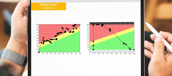 behaviors, fever chart, project management